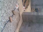 Podluhy betonování stropu047